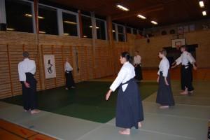 Varde Aikido_1436