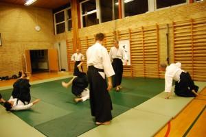 Varde Aikido_1500