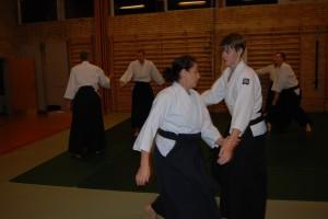 Varde Aikido_1506